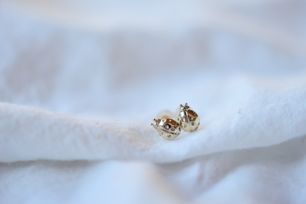 画像1: [10K]Ladybugピアス (1)